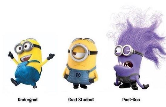 Academic+Minions